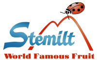 Stemilt Ag Services