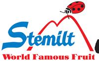 Stemilt Ladybug Club